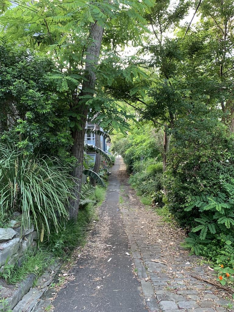 hidden-path